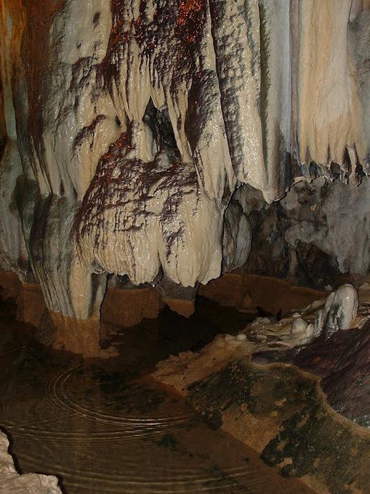 Природный парк Сан Мигель дель Фай. 28249