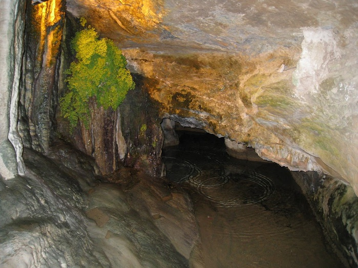 Природный парк Сан Мигель дель Фай. 70322