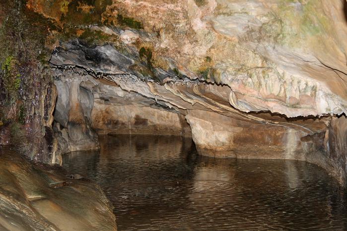 Природный парк Сан Мигель дель Фай. 65108