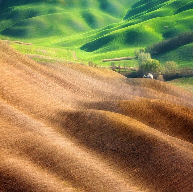 холмы Тосканы.jpg (625x620, 97Kb)