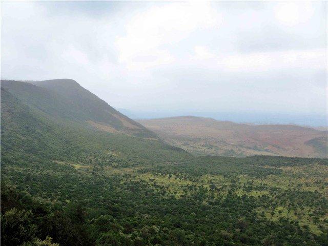 кения (640x480, 49Kb)