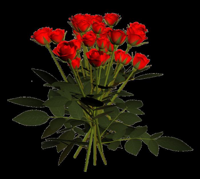 0_70b54_ecd2a56a_XL розы красные (700x627, 342Kb)