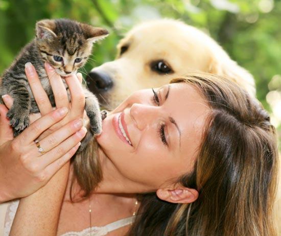 День защиты животных. (550x462, 42Kb)