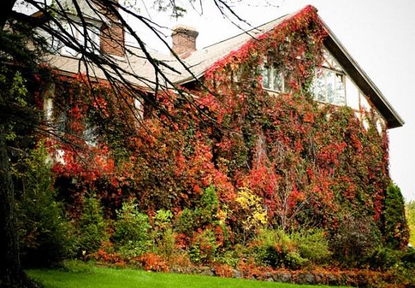 Дома, где живет осень4 (600x417, 122Kb)