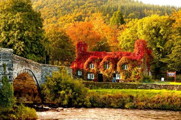 Дома, где живет осень8 (600x400, 113Kb)