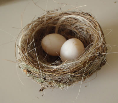 nest_13_texture_textures_free_download_easter (400x351, 26Kb)