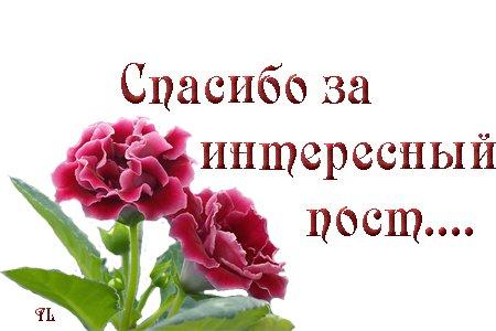 79827833_Dlya_bloga__smayl_spasibo_za_interesnuyy_post (450x300, 28Kb)