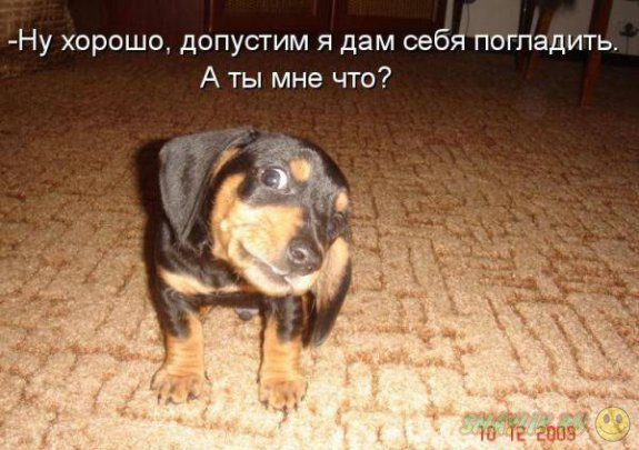 1304149801_mywarez.ru_13040691203111 (575x405, 57Kb)