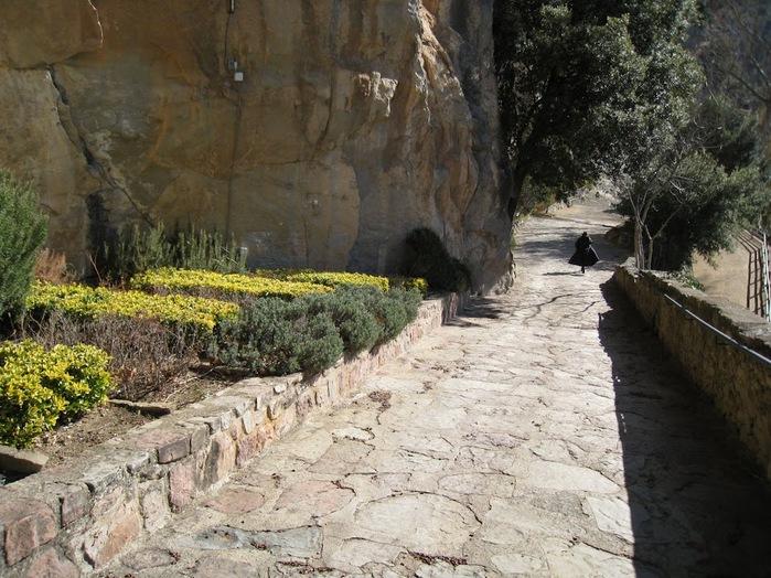 Природный парк Сан Мигель дель Фай. 15490