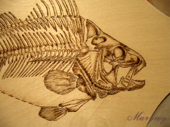 Рыба 1 (567x425, 167Kb)