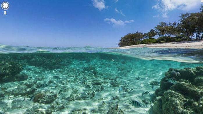 Google добавил к Картам подводные панорамы. Фотографии, видео
