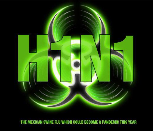 H1N1 (520x445, 31Kb)