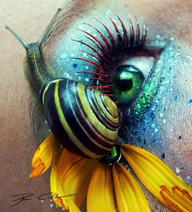 креатинвный макияж Svenja Schmitt 6 (633x700, 575Kb)