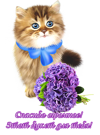 СПАСИБО В КАРТИНКЕ С КОШКОЙ И БУКЕТОМ, (350x469, 254Kb)
