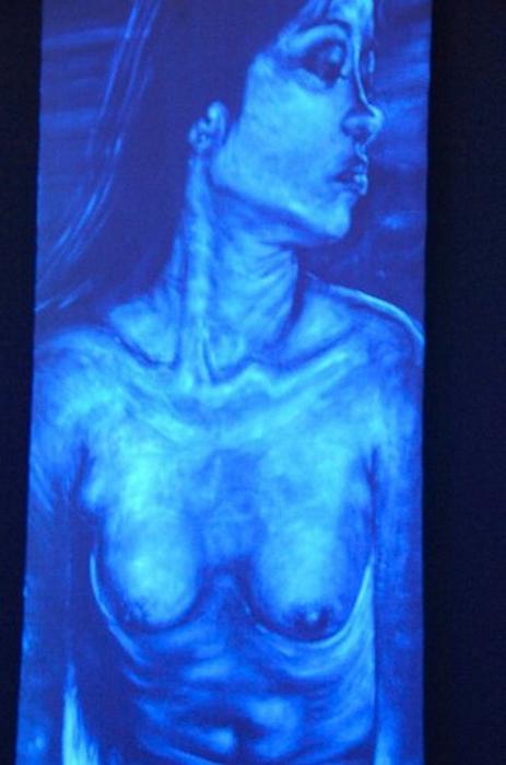 Невидимые картины Эдда Арагона 19 (463x700, 277Kb)