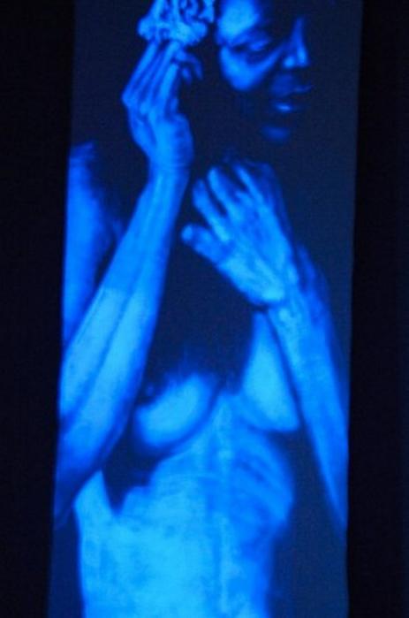 Невидимые картины Эдда Арагона 20 (463x700, 240Kb)