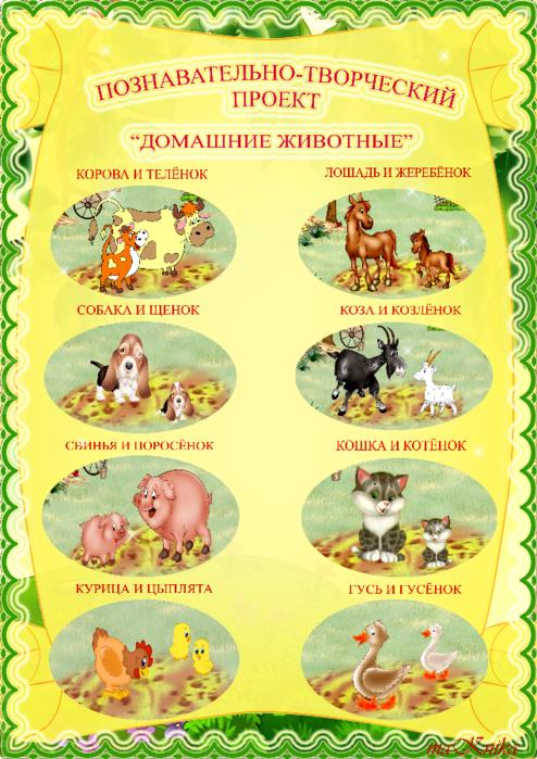 животные4(2) (494x700, 599Kb)