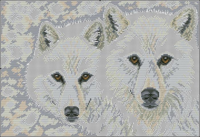 Схема вышивки два волка