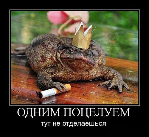 1302445194_skazki (500x457, 136Kb)