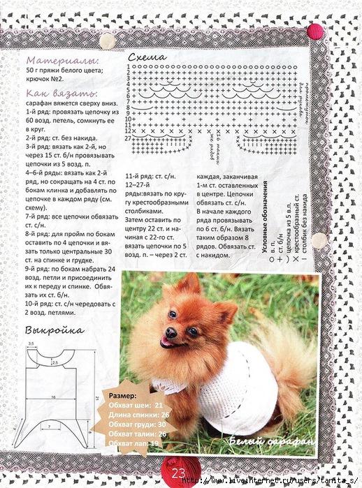 Схемы вязания крючком с описанием для животных