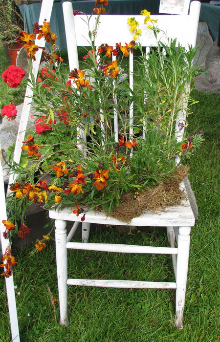 4497432_plantingflowersinchairs22 (450x700, 174Kb)
