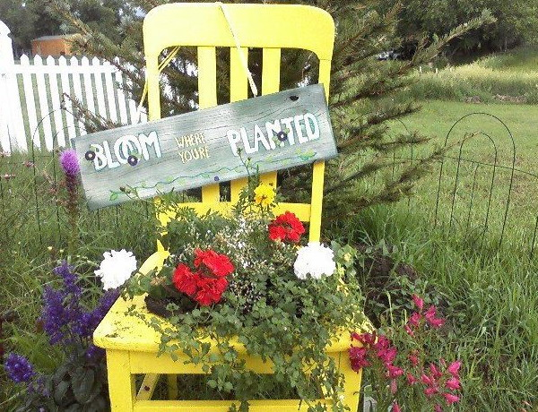4497432_plantingflowersinchairscolorful14 (600x460, 160Kb)