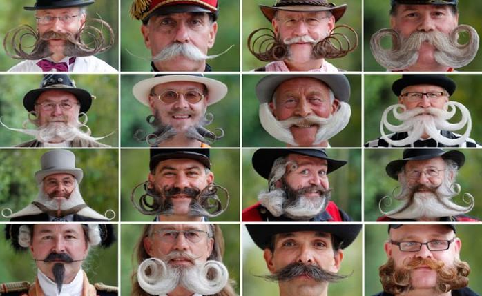 конкурс бородачей во франции 5 (700x429, 92Kb)