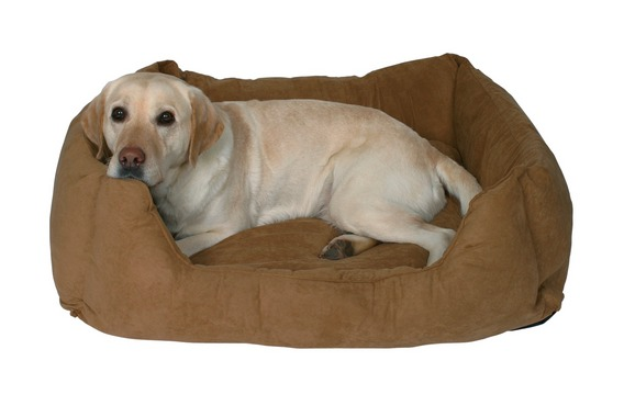 dogs bed (5) (568x380, 31Kb)