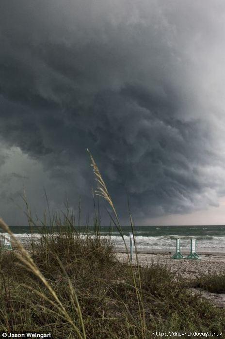 storm florida (5) (464x700, 123Kb)