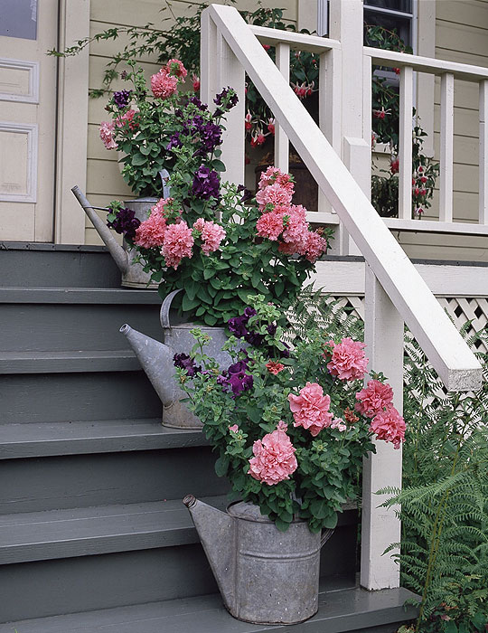 1273232109_container-gardening_lg14 (540x700, 134Kb)