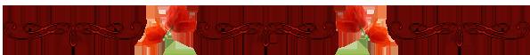 элеганс (595x62, 33Kb)