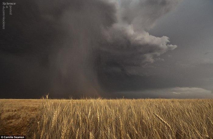 торнадо фото 5 (700x456, 57Kb)
