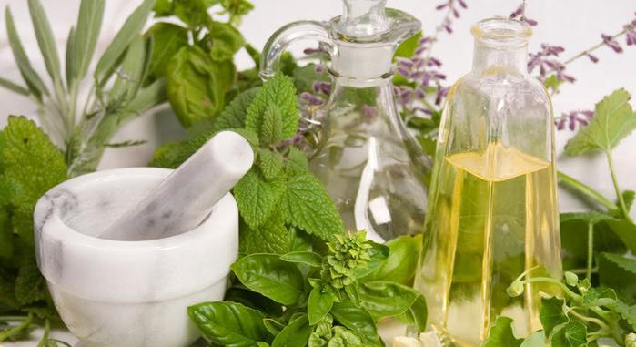 Лекарственные травы от А до Я и народные рецепты, методы лечения болезней