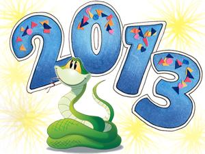 Этот год Змеи!