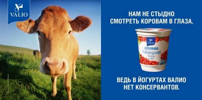 Креативная реклама йогурта   многообразие красок
