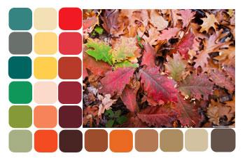 Осень цвета