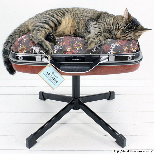 Comfort-Suitcase-for-Awesome-Domestic-Cat-Bed (600x600, 215Kb)