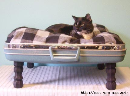 pet-bed-recycled-suitcase (429x317, 58Kb)