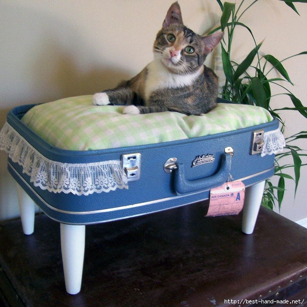 Recycled-Suitcase-Ideas-Farm-Cat-Bed (600x600, 216Kb)