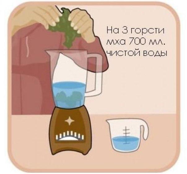http://img0.liveinternet.ru/images/attach/c/6/92/789/92789706_3518263_m1.jpg
