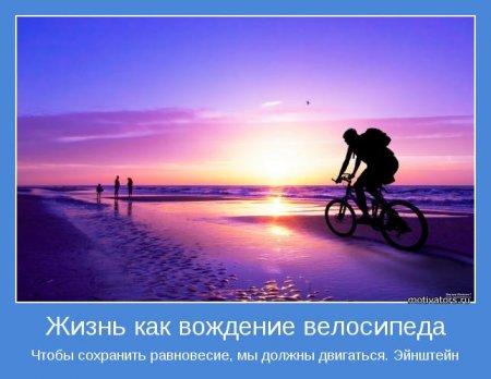 image_33233 (450x348, 28Kb)