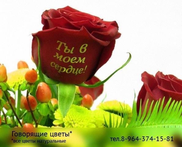 картинки с цветами и надписями: