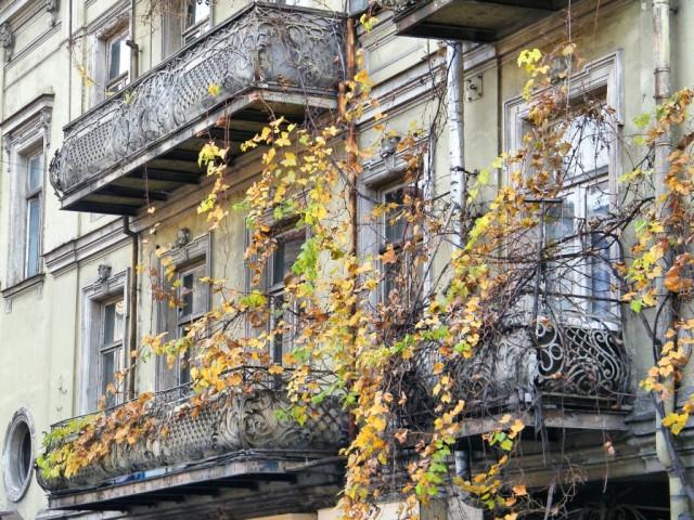 осенний тбилиси фото