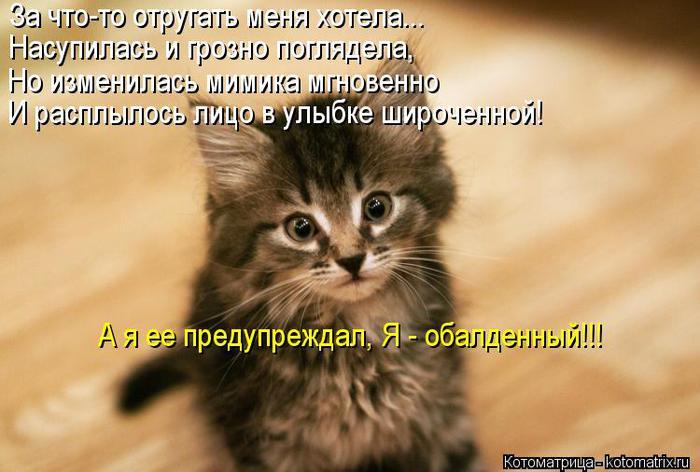 kotomatritsa_h7 (700x472, 51Kb)