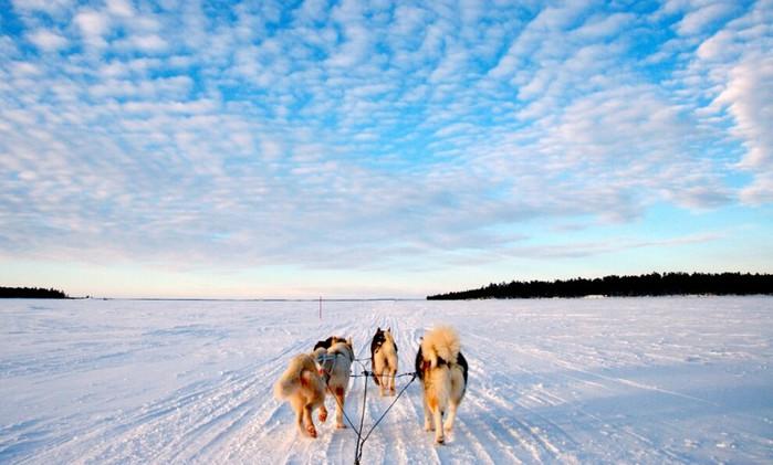 Лапландия (700x421, 73Kb)