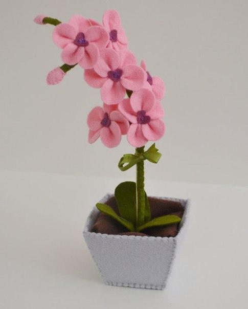 цветы из ф1 (485x604, 23Kb)