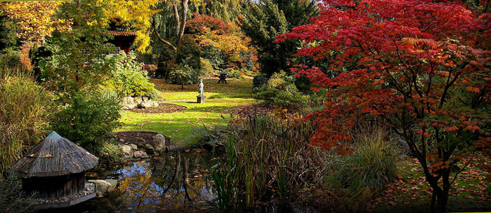 осень в японии4 (700x304, 199Kb)