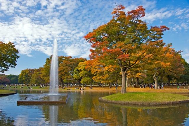 осень в японии5 (640x425, 149Kb)