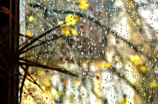 Дождь за окном.... (620x406, 124Kb)