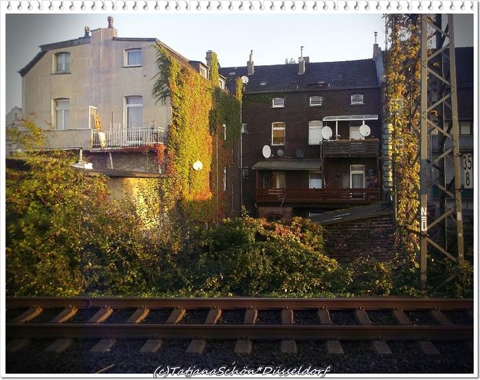 Дюссельдорф*Альбум октябрь2012
